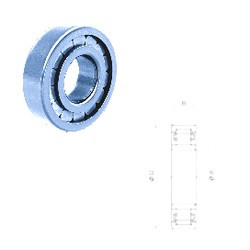 35 mm x 80 mm x 31 mm  Fersa NU2307F cylindrical roller bearings