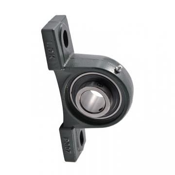 High Quality UCP206 Insert Units Pillow Block Bearing with Housing