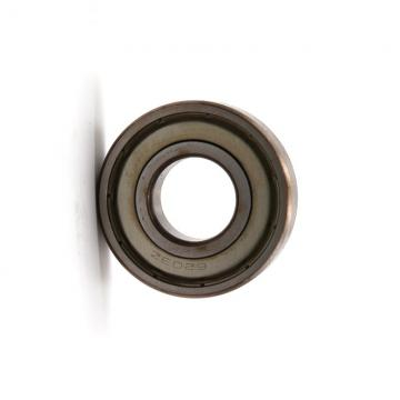Supply SKF 60203 6203z Deep Groove Ball Bearing