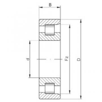 100 mm x 215 mm x 47 mm  ISO NF320 cylindrical roller bearings