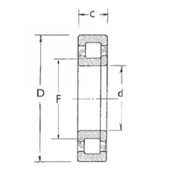 35 mm x 80 mm x 31 mm  FBJ NUP2307 cylindrical roller bearings