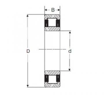 110 mm x 200 mm x 38 mm  SIGMA NU 222 cylindrical roller bearings